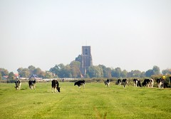 Ransdorp 01 (Quetzalcoatl002) Tags: holland tower church rural landscape countryside cows meadow ransdorp
