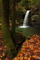 Flat Lick Falls (MarcusDC) Tags: autumn waterfall kentucky fallfoliage jacksoncounty flatlickfalls