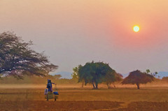 Bagan Dusk (Artypixall) Tags: trees sunset woman texture rural walking burma getty myanmar bagan faa