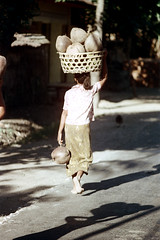 24-303 (ndpa / s. lundeen, archivist) Tags: people bali woman color film 35mm indonesia village basket nick southpacific barefoot balance 24 1970s 1972 coconuts balancing indonesian carry carrying balinese dewolf oceania pacificislands nickdewolf photographbynickdewolf onherhead reel24