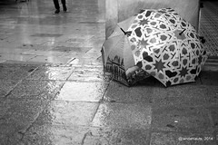 Lluvia de otoño (Landahlauts) Tags: blackandwhite bw blancoynegro rain umbrella lluvia andalucía andalucia granada otoño andalusia andalusien paraguas venta autumm andalousie andalusie andaluz andaluzia andaluzja andaluzio biancoinero andalouzia andalusiya fujifilmxpro1