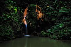 Caldeira Velha (KVH-P) Tags: trees plants portugal water landscape waterfall nikon rocks azores saomiguel 2014 sigma1020mm gitzotripod beacheslandscapes d7000 nikond7000 calderiavelha