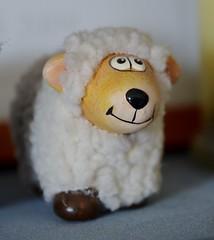 Sheep (smjbk) Tags: sigmalens sigma1770mmcf284dcmacrooshsmlensfornikon
