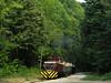 010 12-09-01 Miskolc Ujmassa-Öskoho Bf V D 02 - 508 - 04 (tramfan239) Tags: hungary ungarn narrowgauge miskolc leav lillafüred schmalspurbahn 760mm garadna
