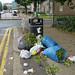 Dumping - near Hartington Park # 2