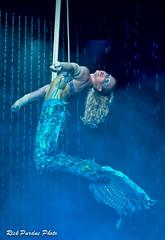 Mermaid Morgaine Rosenthal (Partridge Road) Tags: water italia circus indiana strap cirque act rosenthal merrillville morgaine