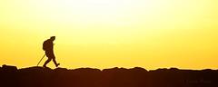 Le marcheur (sergecos) Tags: man homme sunrise leverdesoleil silhouette graphisme minimaliste graphic jaune yellow digue fisher people personne dam côte shore contrast contraste simple minimalist contrejour backlighting couleur color colores pierres stones rivage simply soleil sun sol littoral coastline méditerranée mediterranean pêcheur matin morning mañana nikor solitude lanelines silueta salidadelsol