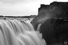 Dettifoss (MD-Pic) Tags: dettifoss iceland island wasser water wasserfall waterfall blackwhite schwarzweis felsen rocks basalt nikon d7100