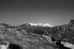 Navacerrada (Canariseven7) Tags: fujifilm xpro2 xf100400 blancoynegro blanco negro bw bn canariseven navacerrada pico miel montaña montain landscape sky ground rock paisaje