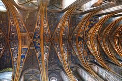 Blue Lobster (hapulcu) Tags: albi france francia frankreich frankrijk frança tarn cathedral