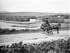 General View, Bruckless, Co. Donegal (National Library of Ireland on The Commons) Tags: robertfrench williamlawrence lawrencecollection lawrencephotographicstudio thelawrencephotographcollection glassnegative nationallibraryofireland bruckless codonegal ireland jauntingcar passenger driver houses trees seaside ulster cassidy jaunty countydonegal tannery brucklesshouse brucklesshall mcswynesbay brucklessharbour ballyboeshill