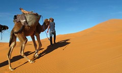 How Can You Find The Hidden Treasure Of Morocco Private Tours? (camelsafarie) Tags: morocco private tours excurssion