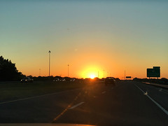 Driving Back From Tampa in the Sunrise (soniaadammurray - On & Off) Tags: iphone sunrise sun sky road driving vehicles reflections trees lights signs fence barrier golden tampa florida usa street scene