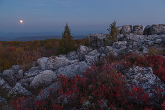 Moonrise at Dolly Sods (Ken Krach Photography) Tags: westvirginia