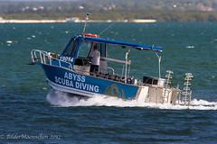 Scubadiving (BilderMaennchen) Tags: mascot newsouthwales australia au bildermaennchen nikon d4