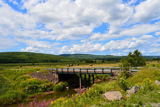 Farm Lands of New Brunswick