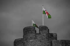 Flying the colours (Scozmo's Photery - On my phone weekdays) Tags: wales welsh dragon caerphilly caerphillycastle flags emblems