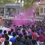 Rangotsav Celebration 2016-17 (14)