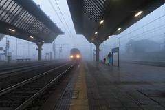 Train in the fog (flubatti) Tags: