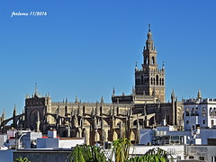 Sevilla. Giralda y catedral. Giralda y catedral (ferlomu) Tags: andalucía catedral ferlomu giralda gotico sevilla