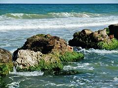 Multicolores en la playa 4-2017 024 (adioslunitaadios) Tags: albuferadevalencia mar playa rocas agua olas horizonte algas 2017 valencia