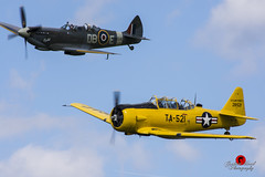 Fly-by (G Bond) Tags: flyby spitfire flight formation motion harvard headcorn kent england america