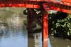 Parc Oriental de Maulévrier, France (Tiphaine Rolland) Tags: parc park parcorientaldemaulévrier maulévrier japonais japanese japanesegarden jardinjaponais jardin garden france にわ 庭 water eau みず 水 red rouge 赤い あかい 緑 pont bridge