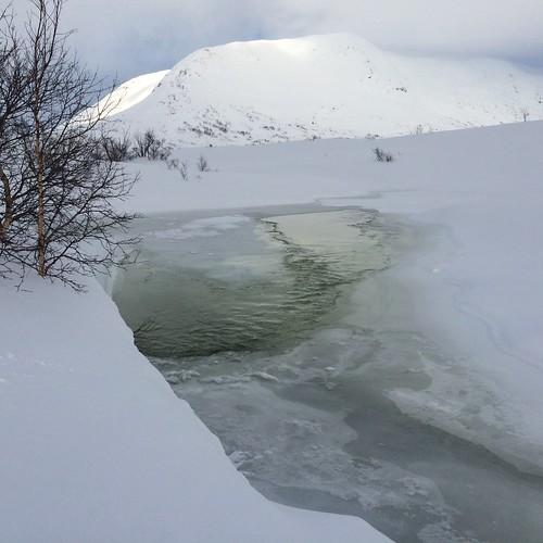 Mere og mere vann elvene i fjellet. Børgefjell. Foto: Lars Lorentzen