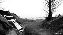 King kong and the girl (patrick_milan) Tags: tag plouguin ploudalmezeau portsall kersaint landunvez landeda lannilis treglonou saintpabu pabu abers finistère brittany bretagne bzh saintrenan renan lanildut aberwrach lampaul plouarzel breles noiretblanc blackandwhite noir blanc monochrome nb bw black white landscape sea mer iroise water saint porsall saariysqualitypictures graffiti girl woman