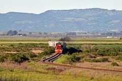 Fairville curves (caltrain927) Tags: nwp northwestern pacific railroad shortline railway emd mp15dc electromotivediesel mp15 loaded grain hopper hoppers tank car california ca sonoma fairville
