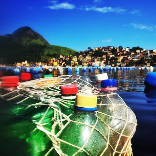 Fazenda Marinha. #niteroi #curtaniteroi #jurujuba #mobilephotography #mobgraphia #everydayeverywhere #everydaybrasil #everydaylatinamerica #everydayriodejaneiro
