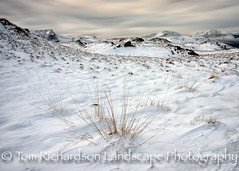 Snow and grasses on High Rigg Cumbria (tomrichardson931) Tags: offthebeatentrack landscape rugged highrigg mountains cumbria outdoor hills moors picturesque lakeland winter countryside scene desolate wildness wild lakedistrict moorland thelakes snow seasons scenic remote europe uk england