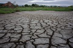 Fake Drought (tourtrophy) Tags: alviso donedwardsnationalwildliferefuge mud mudcracks marsh marshland nikoncoolpixa