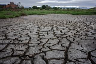 Fake Drought