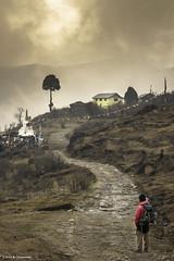 The Last Leg of Day 1 to Tumling (Neha & Chittaranjan Desai) Tags: tumling sandakphu west bengal india trekking travel road sunset trekker