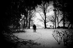 The wanderer (hannibalee) Tags: trees bw white snow black silhouette ghosts