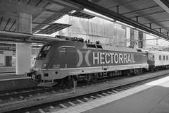 stockholm central station - set 3 #55 (train_spotting) Tags: siemens taurus kraussmaffei stockholmcentralstation hectorrail nikond7100 stoccolmastazione svenskajarnvagar br1825165sehctor