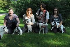 DSC_6238 (Joachim S. Mller) Tags: dog animal germany puppy mammal deutschland hessen hund darmstadt dalmatian tier brgerpark welpen dalmatiner sugetier