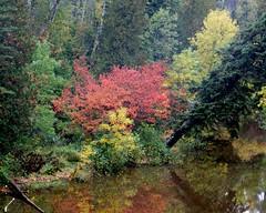 Stewart River (LinderRox) Tags: northshore twoharborsmn stewartriver