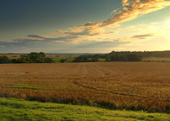 Northumberland landscape (Tony Worrall Foto) Tags: county uk wild england sky beauty field sunrise dawn countryside nice scenery place flat photos framed country north scenic picture scene images location northumberland land vista northeast 2014tonyworrall