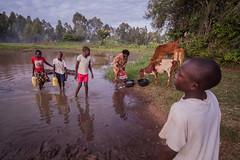 At the water point | Kenya (ReinierVanOorsouw) Tags: kenya health wash kenia hygiene ngo sanitation kakamega kenyai kisumu beyondborders gezondheid qunia  simavi   beyondbordersmedia beyondbordersutrecht sanitatie ngoproject