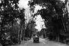 After the Bandipura / Muthyunga Forests on National Highway 212 (BohemianJoy) Tags: kerala roadtrips karnataka forests streetview wyanad indiaroads bandipura