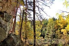 Repovesi_IMG_1745 (Holtsun napsut) Tags: park summer nature trekking finland landscape outdoors europe hiking national maisema kesä repovesi patikointi