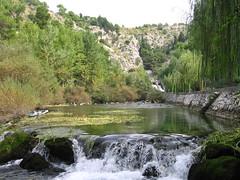Source of River Jadro  - Ichthyological reserve (T.J. Jursky) Tags: europe croatia adriatic dalmatia jadro tonkojursky