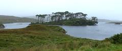 Derryclare Lough, County Galway, Ireland (Douglas Pfeiffer Cardoso) Tags: ireland lake lough connemara westireland countygalway republicofireland connemaranationalpark derryclarelough wildatlanticway
