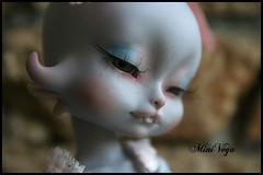 Dreaming Loo (MiniVega) Tags: loo dolls dreaming bjd lillycat loonette cerisedolls