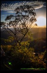 141006-4166-EOSM.jpg (hopeless128) Tags: trees sunset australia bluemountains newsouthwales 2014 glenbrook