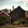 23rd Street, Louisville (deatonstreet) Tags: california house abandoned 120 film architecture kodak kentucky ivy historic louisville 100 automat flexaret ektar