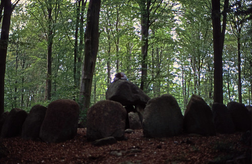 "461DK Frejlev Skov • <a style=""font-size:0.8em;"" href=""http://www.flickr.com/photos/69570948@N04/15355834378/"" target=""_blank"">View on Flickr</a>"