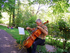 "Man playing Cello (picnickers behind) • <a style=""font-size:0.8em;"" href=""http://www.flickr.com/photos/34843984@N07/15359943028/"" target=""_blank"">View on Flickr</a>"
